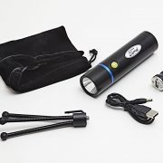 Official Ford Torch & Tripod Kit from Richbrook